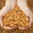 Almond in hands shaping heart — Foto de Stock