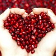 Pomegranate seeds shaping heart in hands — Stockfoto