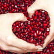 Stock Photo: Pomegranate seed's pile
