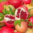 Stock Photo: Bunch of Pomegranates