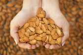 Almond in hands shaping heart — Stok fotoğraf