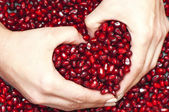 Pomegranate seed's pile — Stockfoto