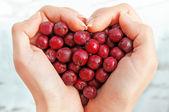 Haws nel cuore shap mani — Foto Stock