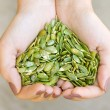 Pumpkin seeds in the hands heart shape — Stock Photo #22262045