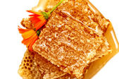 Honeycomb with honey and flowers — Photo