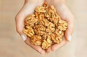 Nüsse in händen — Stockfoto