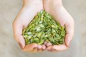 Dýňová semínka v rukou tvaru srdce — Stock fotografie