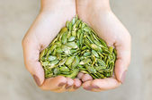 Pumpkin seeds in the hands heart shape — Stockfoto
