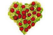 здоровое сердце — Стоковое фото