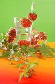 Fresh water and strawberries — Stockfoto