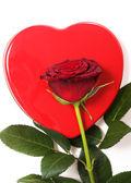 心と赤いバラ — ストック写真