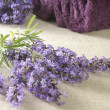 Bunch of lavender — Stockfoto