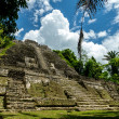 Lamanai, Mayan ruin in Belize — Stock Photo #18772489