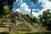 Lamanai, Mayan ruin in Belize — Stock Photo