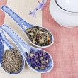Herbs tea in spoons — Stock Photo
