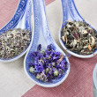 Herbs tea in spoons — Stock Photo #19330331