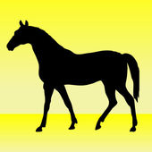 Silhouette of horse — Stock Vector