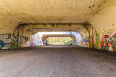 Tunnel with graffiti — ストック写真