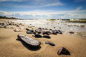 Pebbles on the beach shining in the sun — Stock Photo
