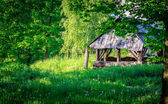 Cabin in the woods — Stock Photo