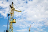 Cranes in the sky — Stock Photo