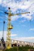 Yellow crane — Stock Photo