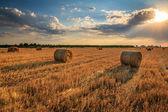 Gün batımında saman rulo — Stok fotoğraf
