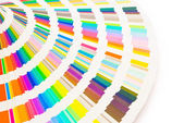 Color guide with clipping path — Stock Photo