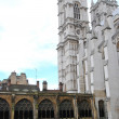 Westminster Abbey — Stock Photo #18152247