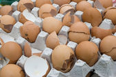 Broken eggshells — Foto de Stock