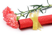 Paper scroll with gold bow and carnation on white — Stock Photo