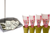RMB rising and USD in rubbish bin with clipping path — Stock Photo