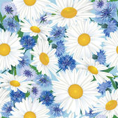 Seamless pattern background with chamomile and cornflowers — Stock Vector