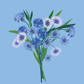 Bouquet with blue cornflowers — Stock Vector