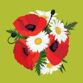 Buquê de papoilas com chamomiles, flores do prado — Vetorial Stock