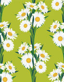 Seamless pattern with bouquets of chamomiles on green background — Stock Vector