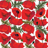 Poppies seamless pattern — Stock Vector
