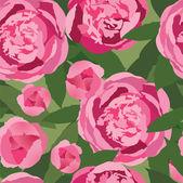Pink flowers peonies — Stock Vector