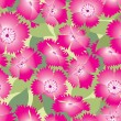 Seamless pattern background with pinks flowers, carnations — Stock Vector