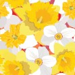 Seamless pattern with flowers daffodils — Stock Vector #18932507