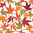 Seamless pattern from autumn maple leaves on white background — Stock Vector