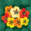 Seamless pattern background with multicolor bouquet of flowers nasturtium - Grafika wektorowa