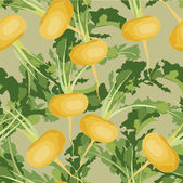 Seamless background with yellow vegetable turnips — Stock Vector