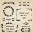 Calligraphic retro elements and page decoration. Vintage Vector Design Ornaments — Stock Vector