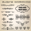 Calligraphic retro elements and page decoration. Vintage Vector Design Ornaments — Stock Vector #20000683