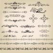 Vector set: calligraphic design elements and page decoration. Calligraphic retro elements for page decoration. Vintage Vector Design Ornaments — Stock Vector #20000693