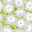 Floral seamless pattern with white flowers petunias — Stock Vector
