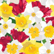 Floral seamless pattern. flower background with red tulip and white daffodil — Stock Vector