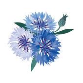 Meadow flower bouquet. cornflowers. — Stock Vector