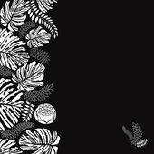 Black and white floral vector border — Stock Photo